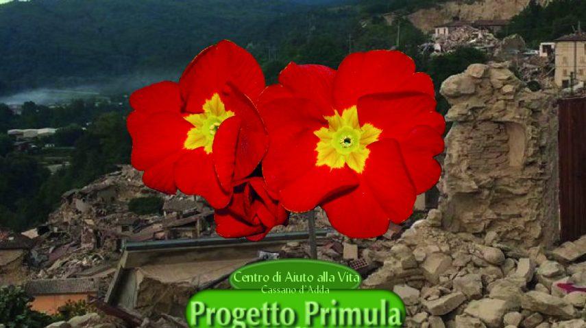 Progetto Primula - terremoto Marche
